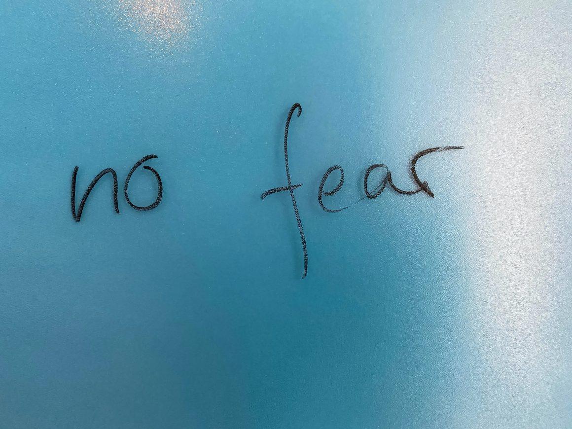 no fear no miedo